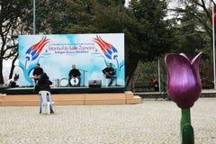 Banquete internacional del tulipán, Estambul Imagen de archivo libre de regalías