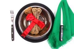 Banquete para um cão imagens de stock