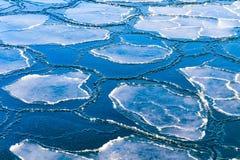 Banquisas de gelo imagem de stock