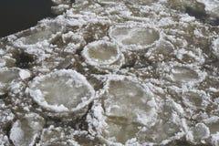 Banquisas de gelo no rio Elbe no inverno imagem de stock