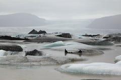 Banquises dans le glacier de l'Islande Images stock