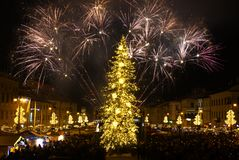 New Year`s Eve firework. BANSKA BYSTRICA, SLOVAKIA - JANUARY 1, 2017: New Year`s Eve firework behind Christmas tree. Celebrating 2017 in Banska Bystrica Stock Images