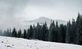 bansko保加利亚横向山冬天 库存图片