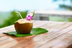 Banta drinken Organiskt kokosnötvatten, mjölkar Näring Hydration H fotografering för bildbyråer
