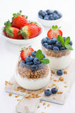 Banta efterrätten med yoghurten, mysli och nya bär, lodlinje Royaltyfri Foto