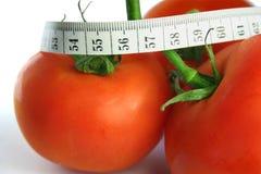 banta tomaten royaltyfria bilder