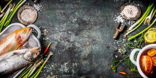 Bantar kryddar lantlig bakgrund för mat för sunt eller matlagningrecept med rå fiskar, smaktillsats, grönsaker och ingredienser,  Royaltyfria Foton