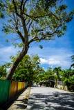 Bantayan - väg Royaltyfria Bilder