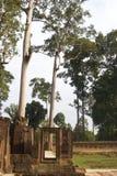 banteay构成的srei结构树 免版税库存图片