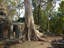 Banteay Kdei, Angkor Royalty Free Stock Photography