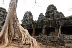 Banteay Kedi tempel i Angkor Royaltyfri Fotografi