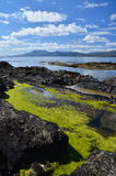 Bantry Bay in August Stock Photo