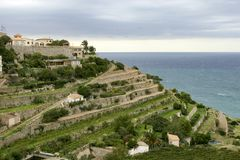 Banyalbufar, Majorca, Hiszpania obrazy royalty free