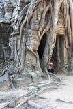 Banyan drzewo przy Ta Som Fotografia Royalty Free