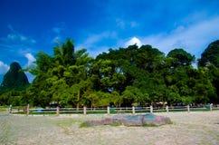 Banyan tree Stock Images