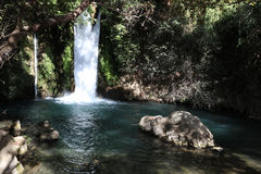 Banyas Nature Reserve in the upper Galilee. Israel stock photo
