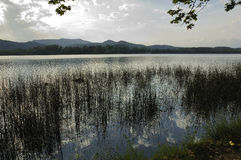 Banyoles lake Royalty Free Stock Images