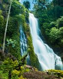 Tropical waterfall in Indonesian forest stock photos
