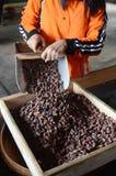 Banyuwangi lizenzfreie stockfotografie