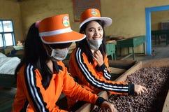 Banyuwangi lizenzfreie stockfotos