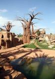 Baobab foto de stock