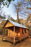 Baobab cabin. Cabin in the dry forest of Kirindy Mitea National Park, in Madagascar Stock Photos