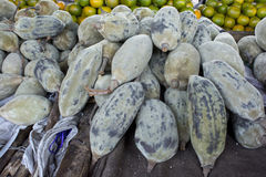 Baobab fruit Royalty Free Stock Photo