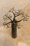 Baobab malgaxe do ofício imagens de stock royalty free