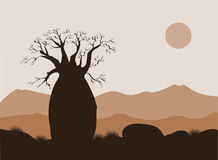 Baobab tree landscape with mountains background. Baobab silhouette. African sunrise Royalty Free Stock Photography