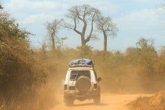 Baobab weg von der Straße Stockfotos
