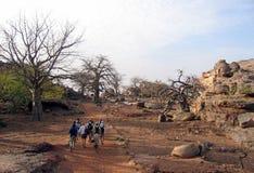 baobaby Zdjęcia Stock