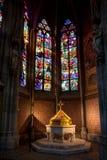 Baptistery da fonte, igreja votiva, Viena, Áustria Fotos de Stock