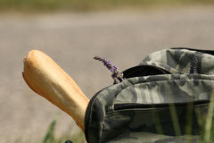 Baquette. With lavende in the backpack stock photos