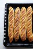 Baquettes frais d'or sur le plateau de cuisson Image stock
