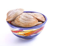 Bar Clams Stock Photography