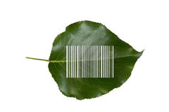 Bar code on green leaf Royalty Free Stock Photos