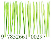 Bar code made from grass blades Stock Photo