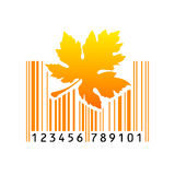 Bar code. Vector illustration. Eps 10 Stock Photo