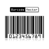 Bar code vector on white background . Stock Image