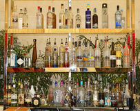 Bar. Different kinds of alcoholic drinks in a bar Stock Images