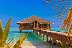 Bar dos termas na ilha de Maldivas Foto de Stock