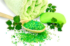 Salt in a spoon and soap green with nettles Stock Photography