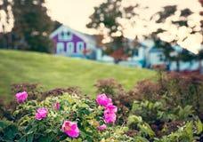 Bar Harbor Maine, coast area. stock photo