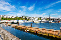 Bar Harbor in summertime, Des Miens Royalty Free Stock Photo