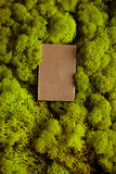 Bar of herbal tea soap Royalty Free Stock Photography
