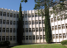 Bar-Ilan University two cypress 2009 Stock Images