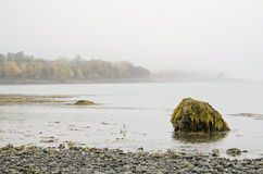Bar Island in Bar Harbor, Maine. Fog on natural land bridge sand bar at low tide that connects Bar Harbor, Maine and Bar Island in Acadia National Park at Autumn stock images