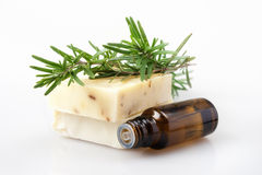 Bar of Natural Rosemary Soap Oil Bottle Stock Images