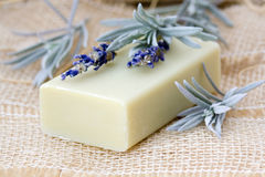 Bar of natural soap Royalty Free Stock Photos