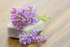Bar of natural soap Royalty Free Stock Photography